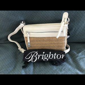 Brighton Boyd City Handbag Organizer Straw White